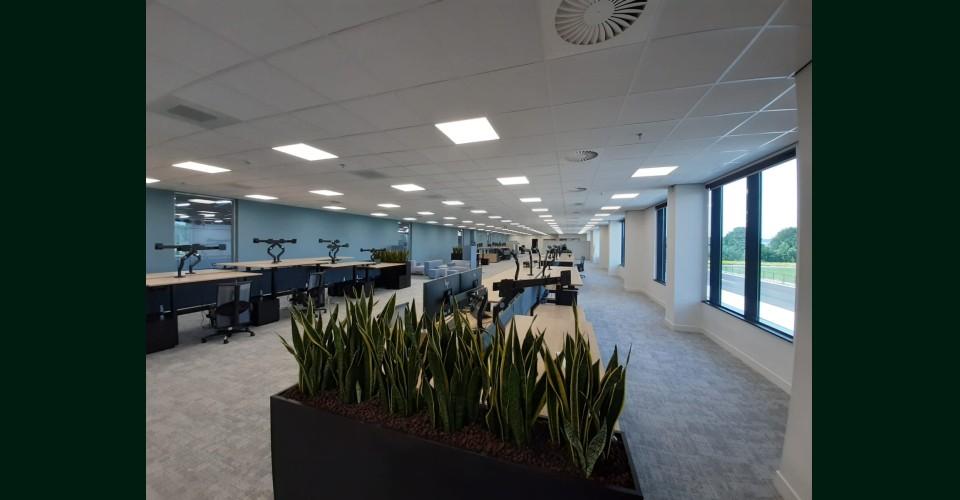Planten kantoor.jpeg