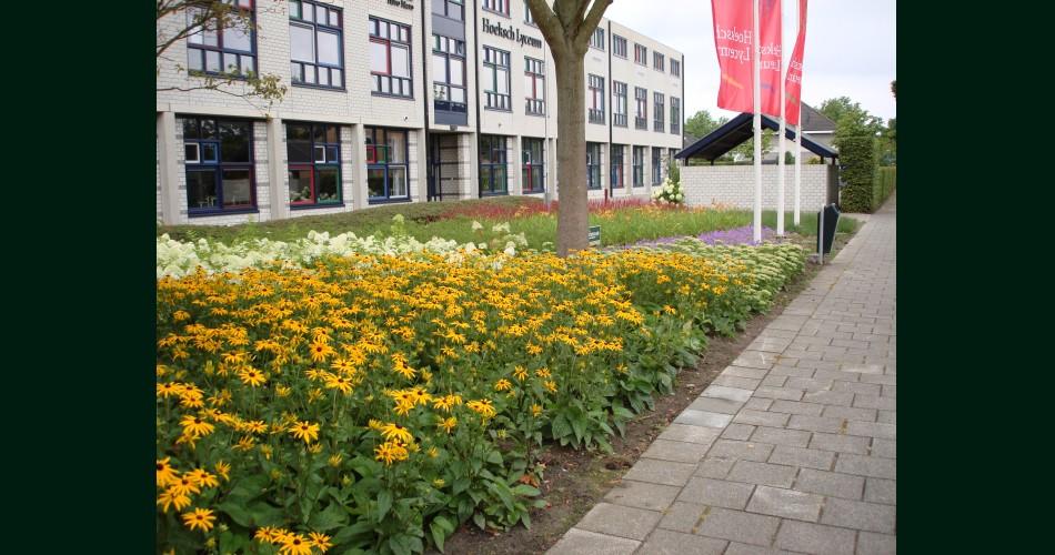 Plantwerk school.JPG